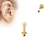 6mm Gold Tragus Forward Helix Labret Monroe Lip Cartilage Bar Stud | Piercing Labret Monroe Levre Helix Cartilage Barre Or 6mm