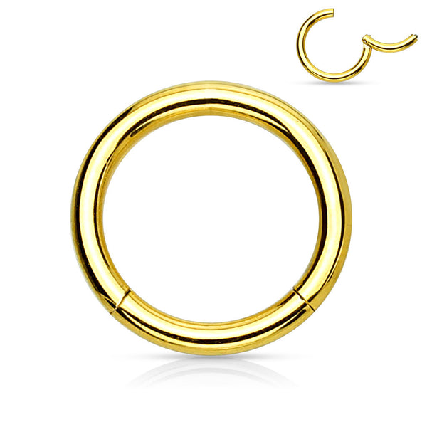 Gold Hinged Segment Rings, 14G, 16G, Segment Clicker Ring, Seamless Hoop Ring