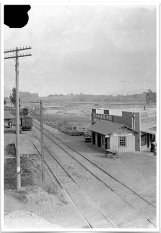 An old photo of the Ronsheimer building and the railroad through Penngrove circa 1890's
