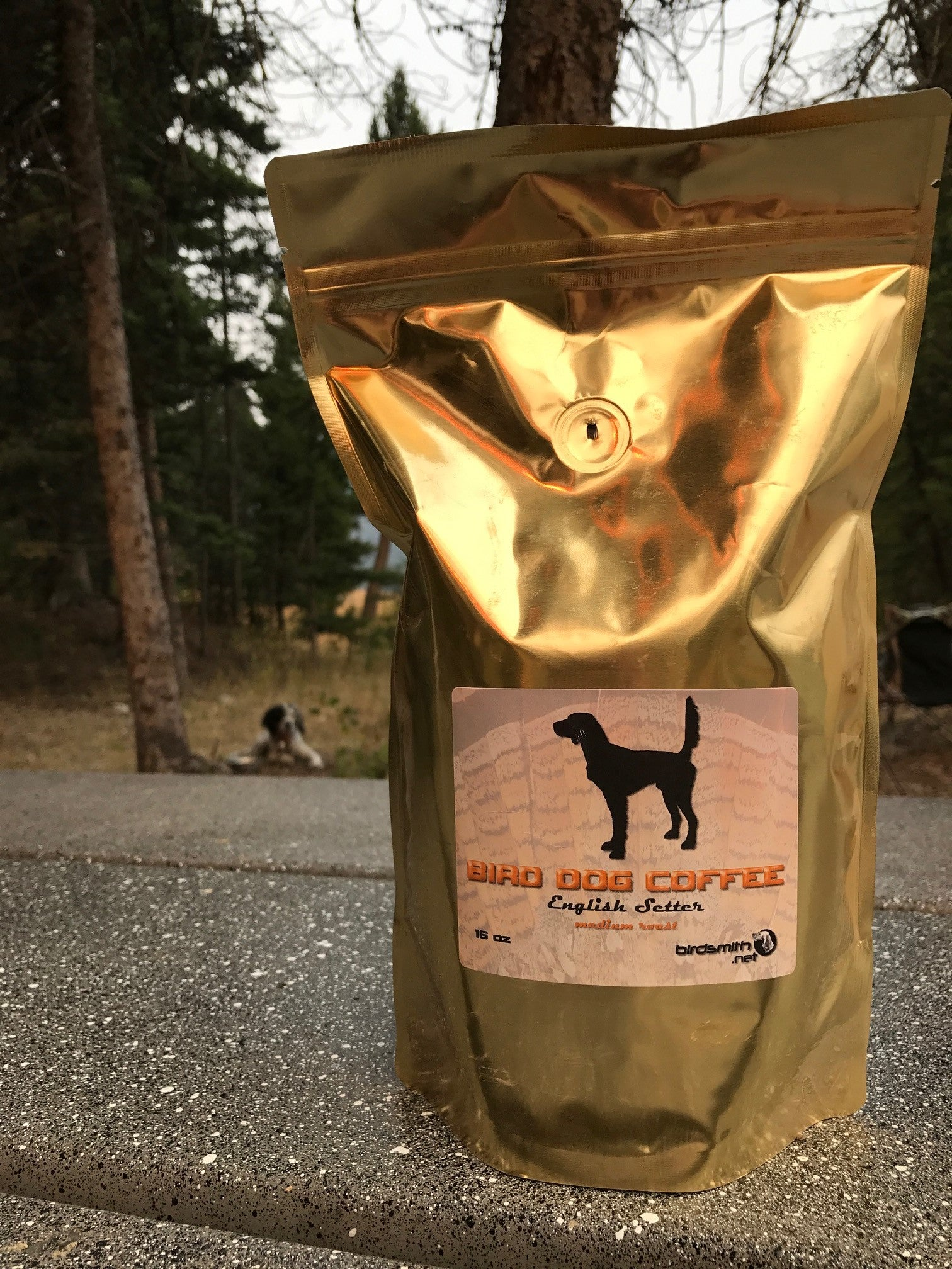 BIRD DOG COFFEE - English Setter Whole Bean
