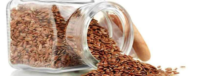 Flax Seed Nutritional Info