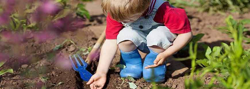 Tips for Encouraging Kids to Garden!