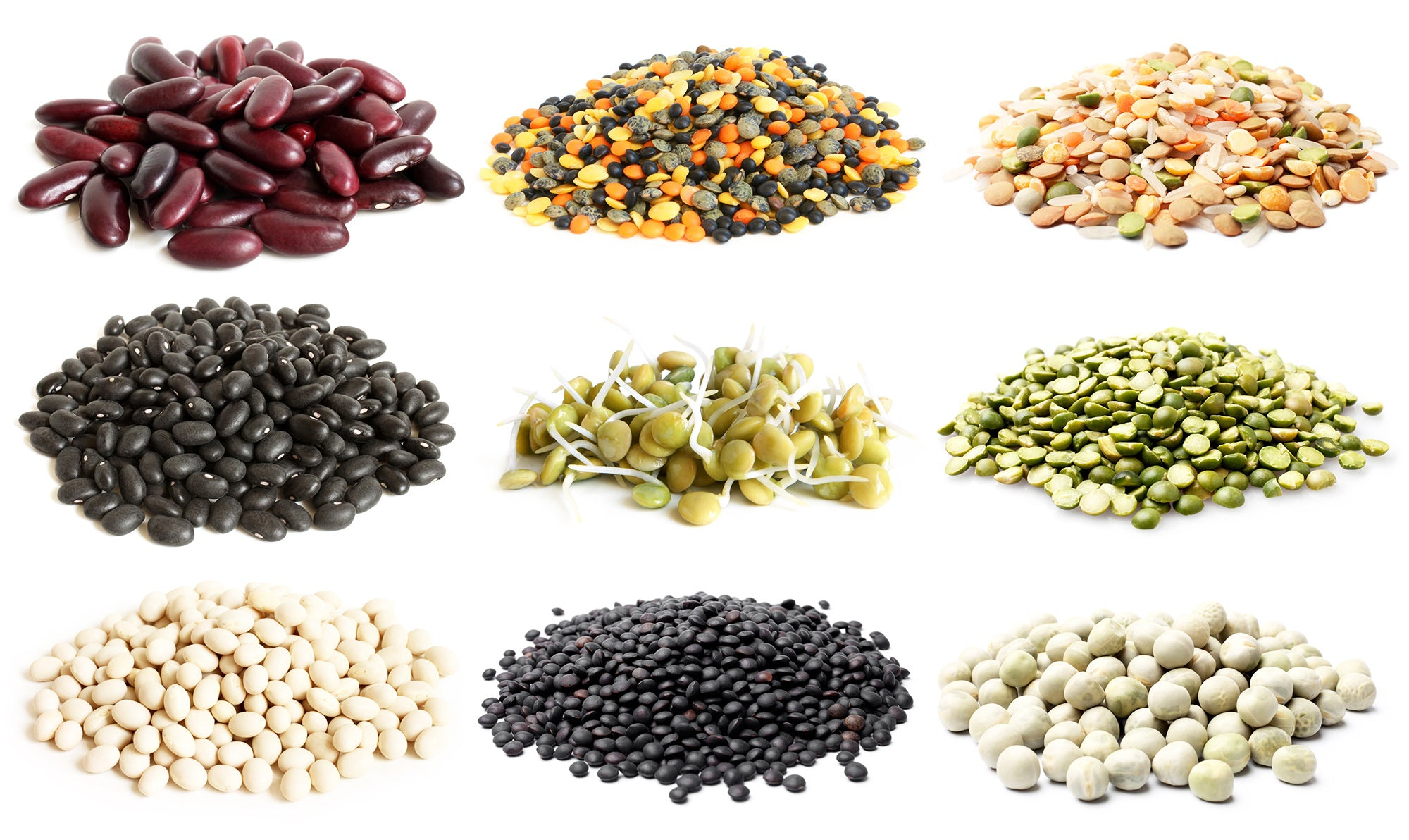 Seed Types