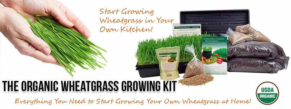 The Organic Wheatgrass kit