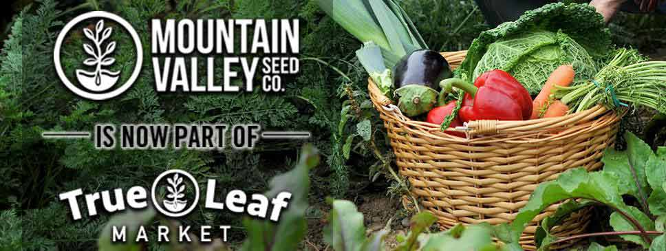 Mountain Valley Seed Co | Non-GMO, Heirloom & Organic Seeds