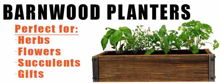 Barn Wood Herb Planters