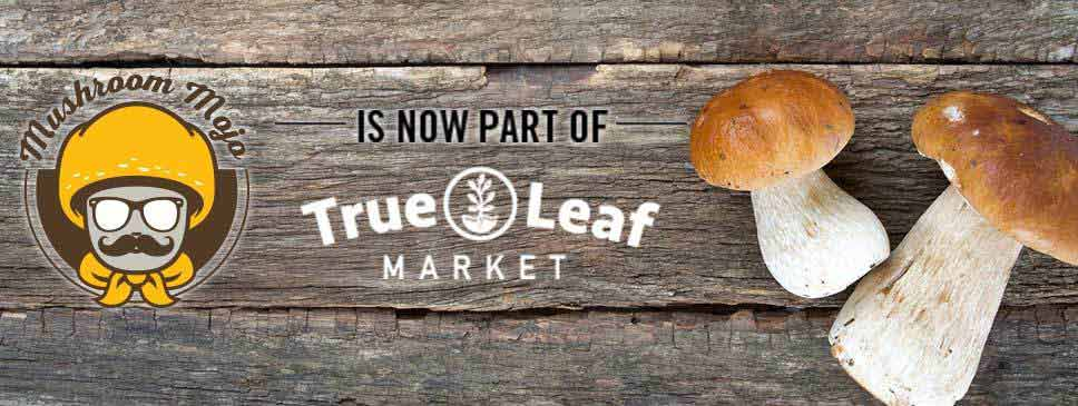 Mushroom Mojo is now part of True Leaf Market