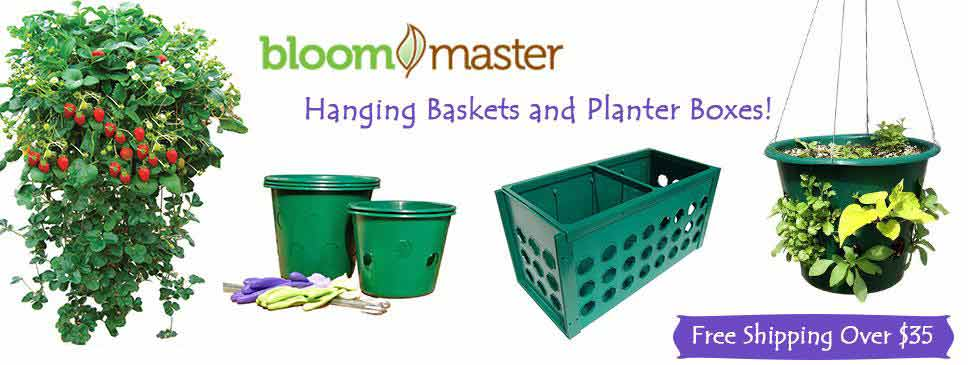 Bloom Master Supplies and Accessories