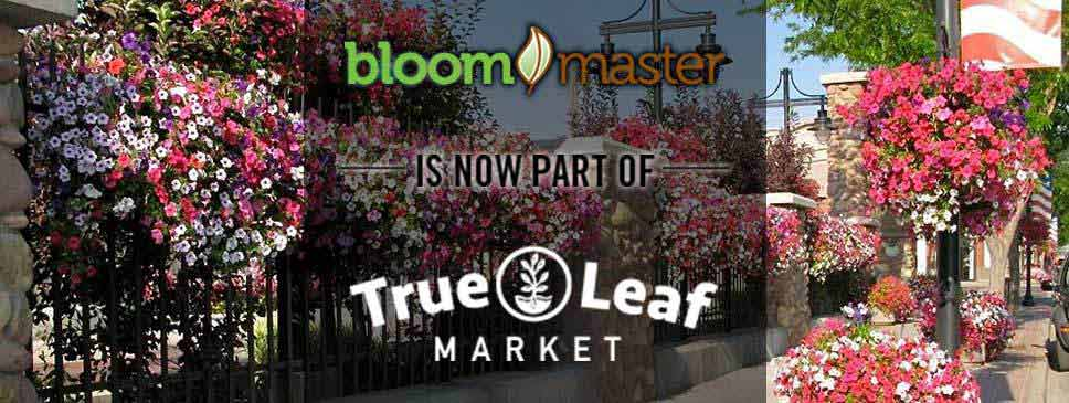 Bloom Master is now part of True Leaf Market