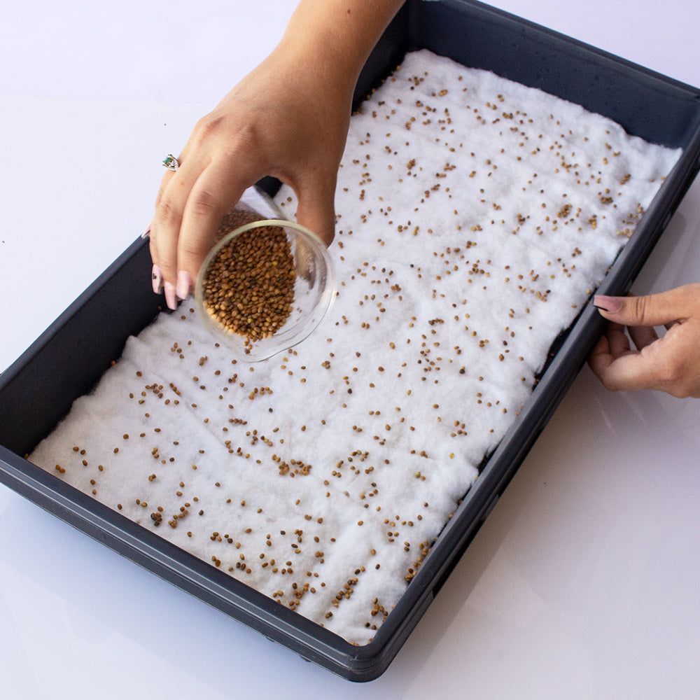 nesting grow trays step