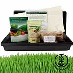Hydroponic Wheatgrass Kit