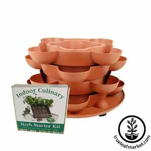 Stack and Grow Planter + Culinary Herb Kit