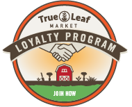 Earn loyalty points with every order!