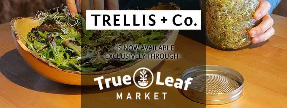 Trellis & CO is now part of True Leaf Market