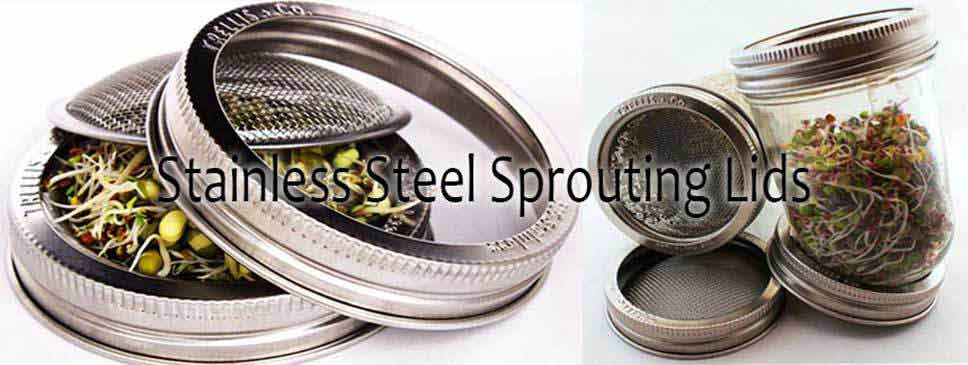 Stainless Steel Seed Sprouters
