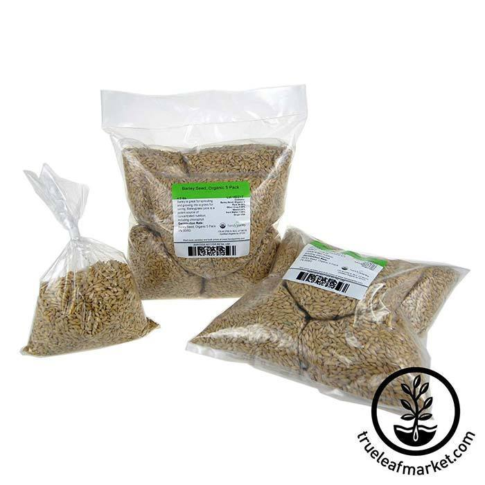 Barley Grass Sprouting Seed: Organic 5 premeasured bags