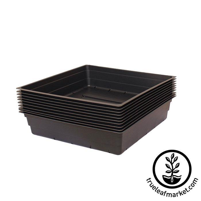 Ten 1010 Greenhouse Trays