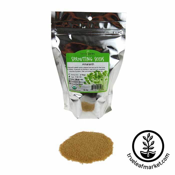 Amaranth Sprouting Grain: Organic 1 lb