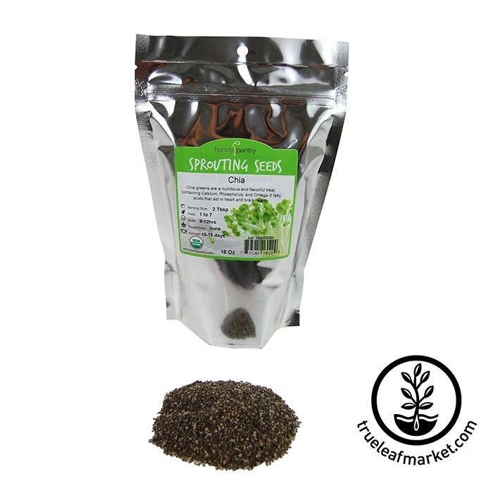 Chia: Black Seeds - Organic 1 lb