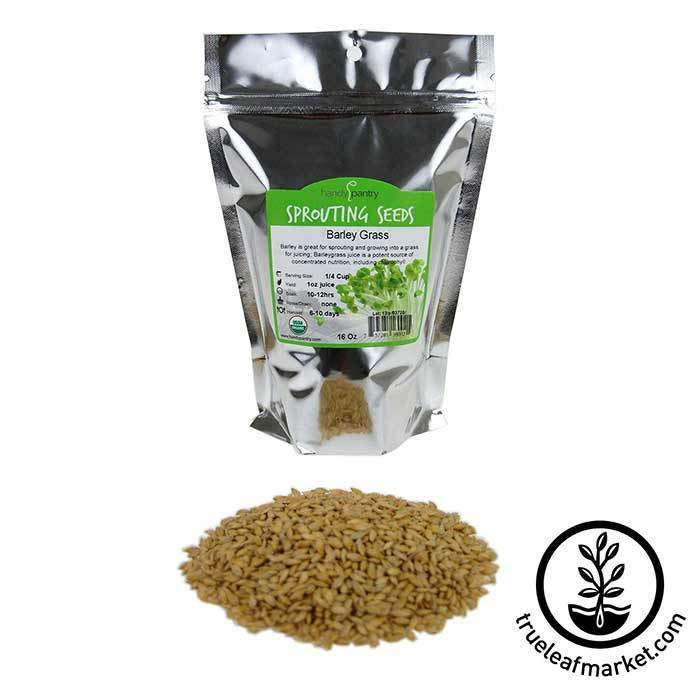 Barley Grass Sprouting Seed: Organic 1 lb