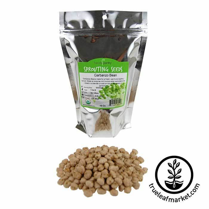 Garbanzo Beans for Sprouting - Organic 1 lb