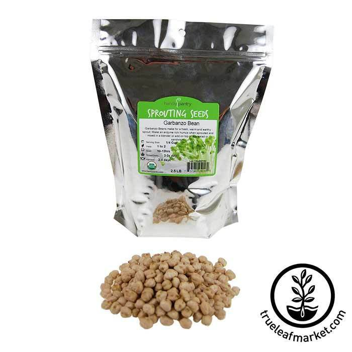 Garbanzo Beans for Sprouting - Organic 2.5 lb