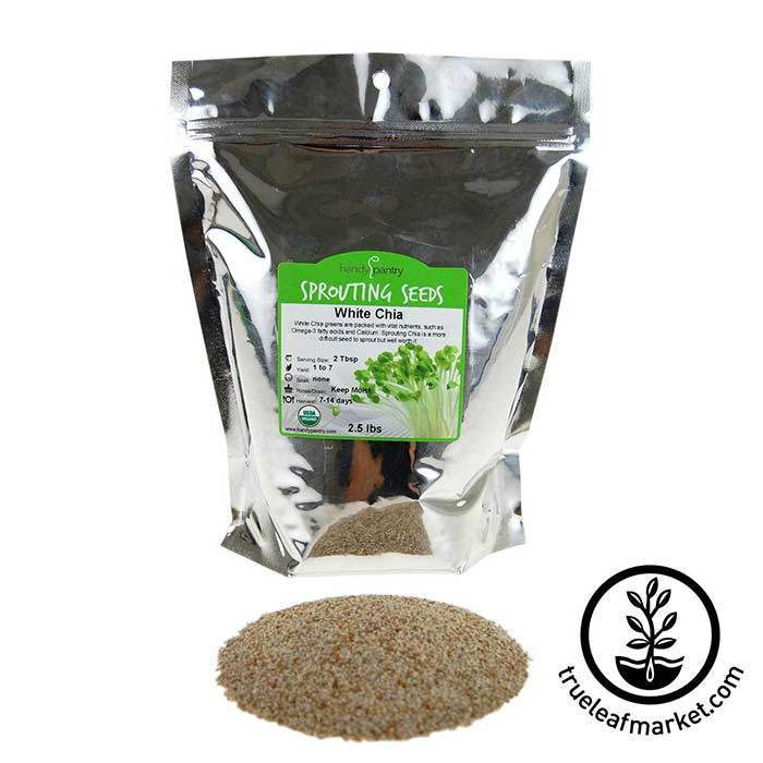 Chia: White Sprouting Seeds - Organic 2.5 lb