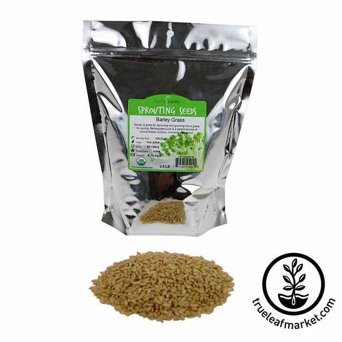 Barley Grass Sprouting Seed: Organic 2.5 lb