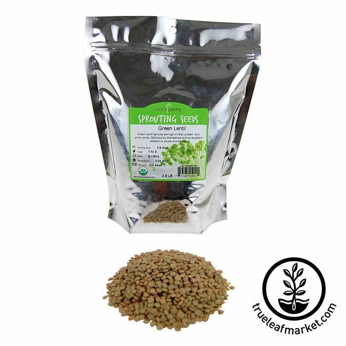 Lentils - Green Sprouting Seed - Organic 2.5 lb
