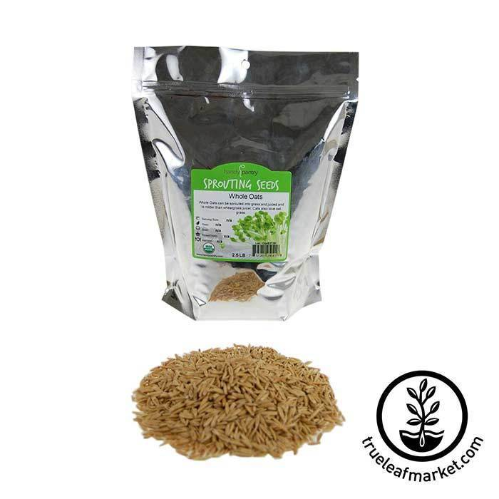 Oats: Whole Oat Grain - Organic 2 lb