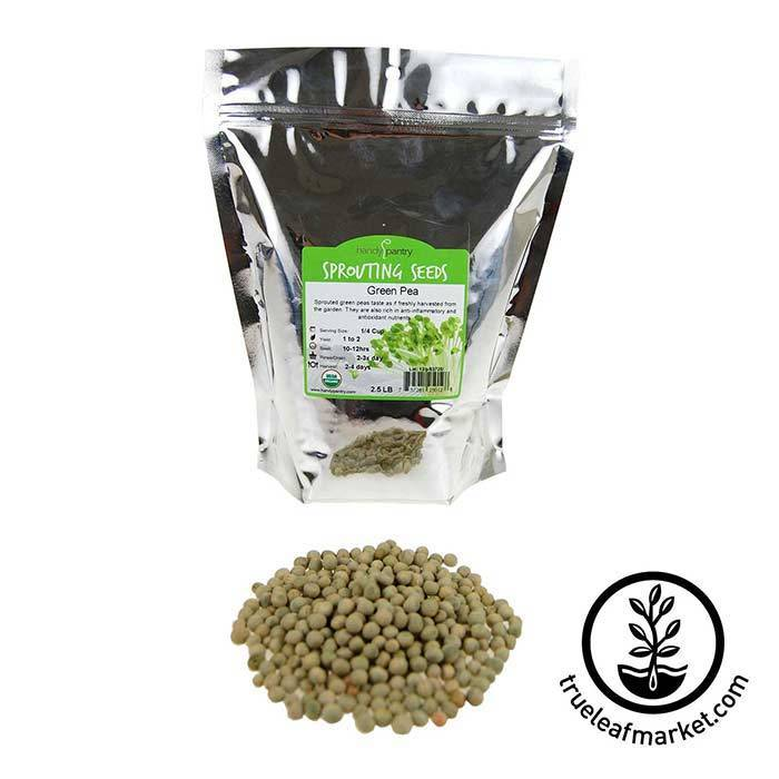 Green Pea Sprouting Seed - Organic 2.5 lb