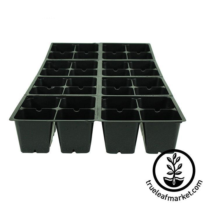 Tray Insert - 32 Cell - 8x4 Nested 1 Tray