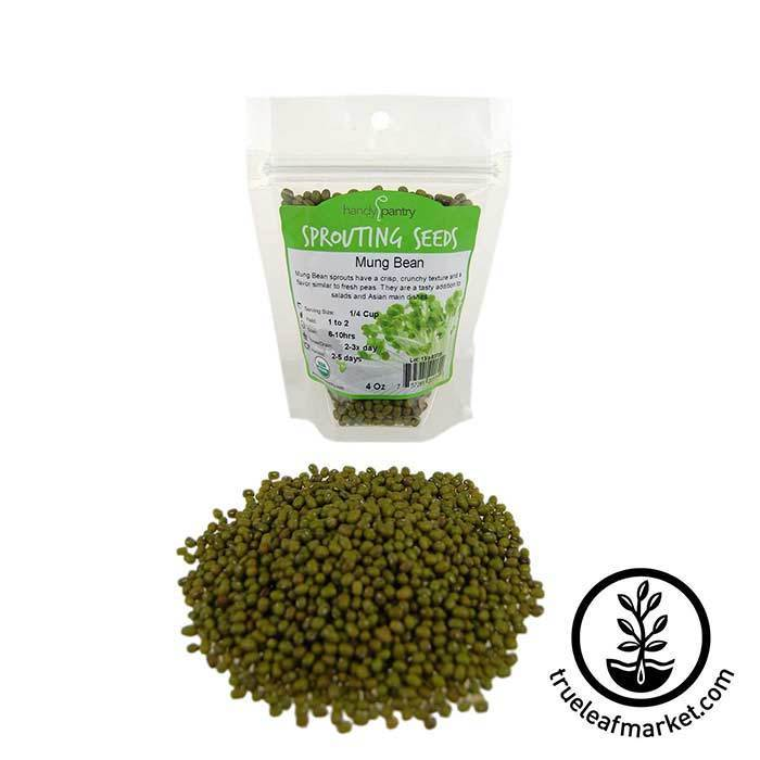 Mung Bean Sprouting Seed - Organic 4 oz