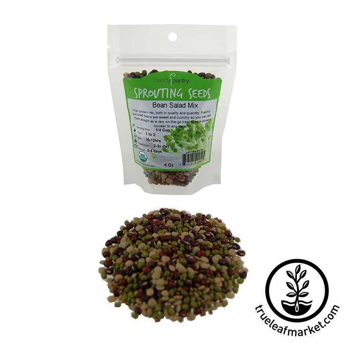 Bean Salad Sprouts Mix: Organic 4 oz