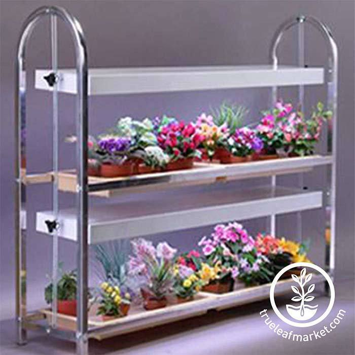 Four Tray (2 Shelves) Wide Growing Stand For indoor or outdoor growing