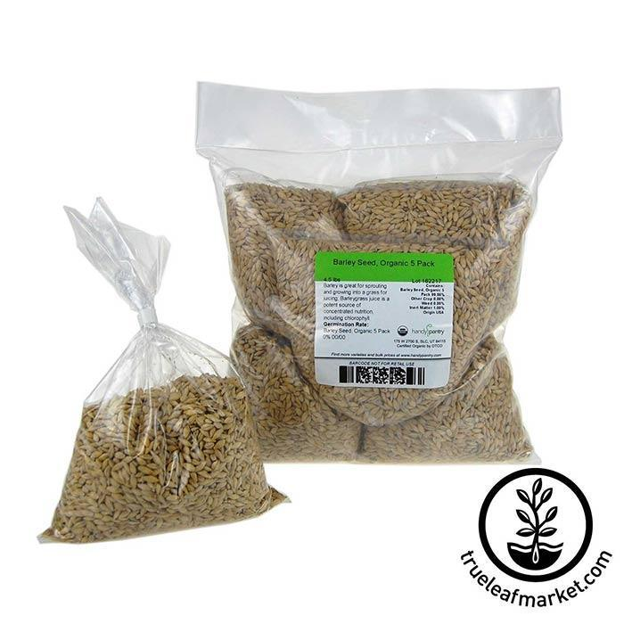 Barley Grass Sprouting Seed: Organic 5 Pre-measured Bags