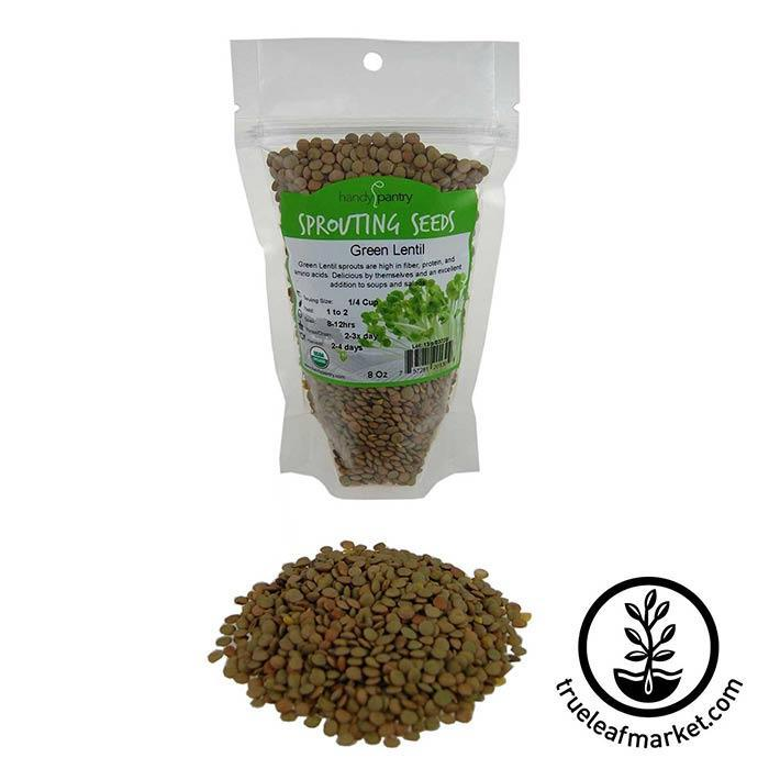 Lentils - Green Sprouting Seed - Organic 8 oz