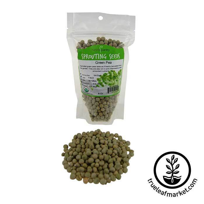 Green Pea Sprouting Seed - Organic 8 oz
