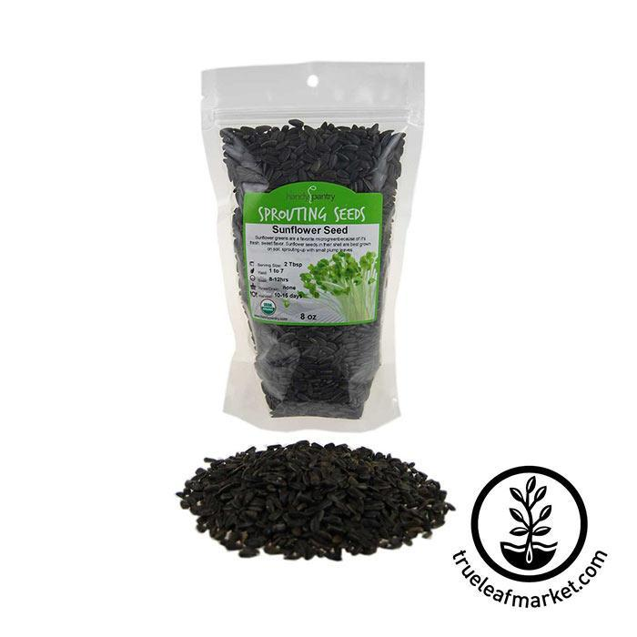 Sunflower Seeds: In Shell Black - Organic 8 oz