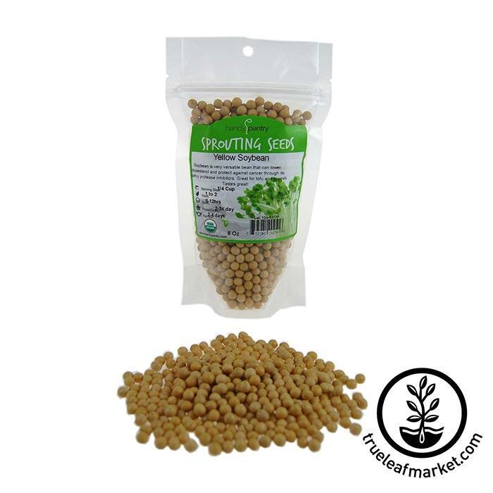 Soybeans: Yellow - Organic 8 oz