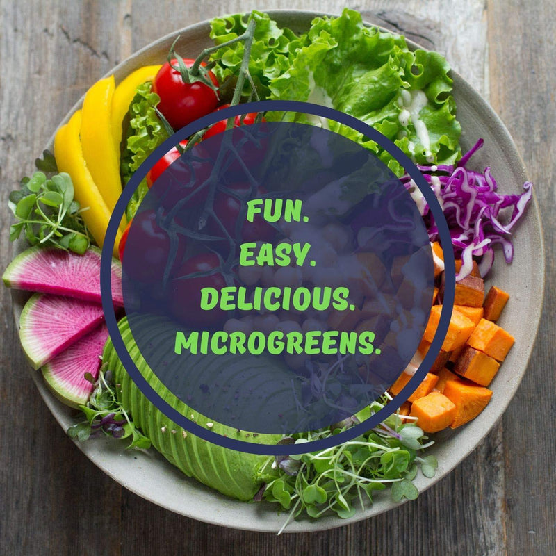Easy & Fun To Grow Microgreens