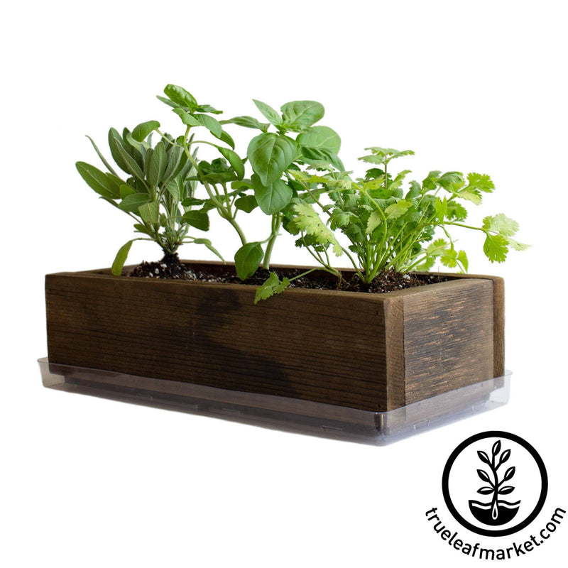 Barnwood Planter Organic Culinary Herb Garden Kit brown white background
