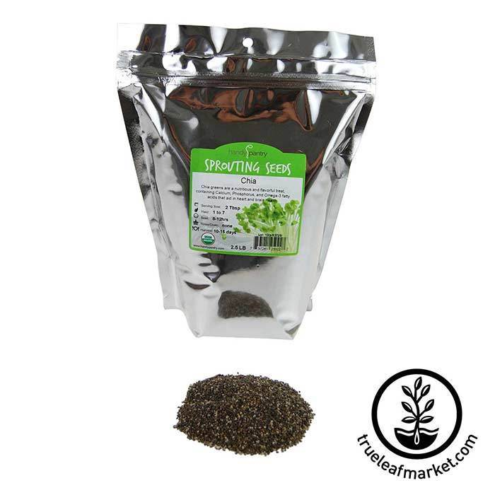 Chia: Black Seeds - Organic 2.5 lb