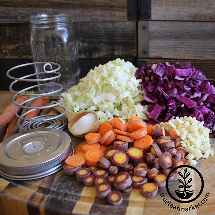 Stainless Steel Fermenting Kits ferment fresh veggies