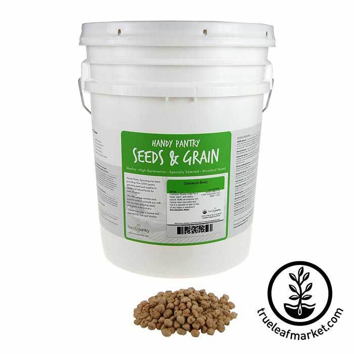 Garbanzo Beans for Sprouting - Organic 35 lb