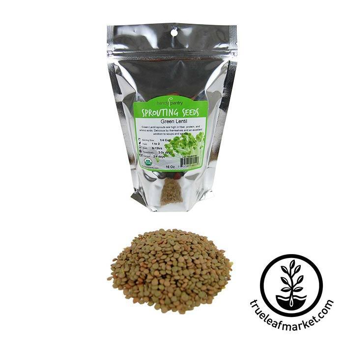 Lentils - Green Sprouting Seed - Organic 1 lb