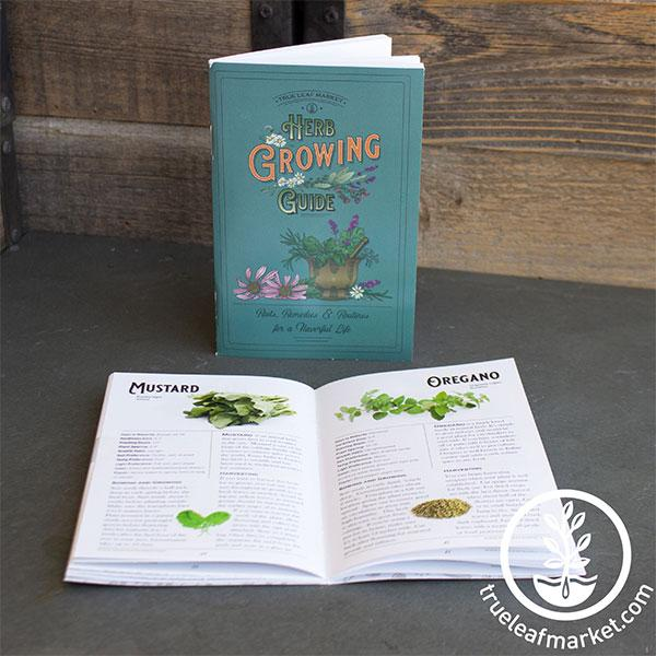 herb growing guide front and open