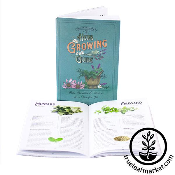 herb growing guide front and open white background