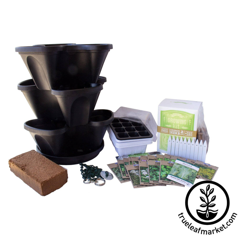 Complete Indoor Culinary Herb Garden Starter Kit - Black