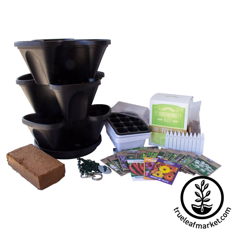 Medicinal & Tea Herbs Grow Kit - Black
